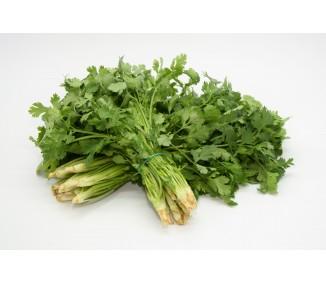Heung choi, (cilantro,...