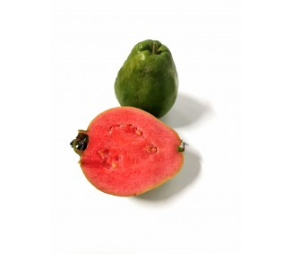copy of Guayaba