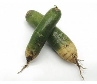Green Radish